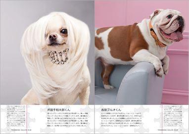 レイアウトソフトbookumaで制作した犬猫等のトリミングカタログ
