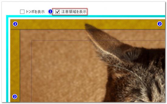 DTPソフトbookumaの注意領域
